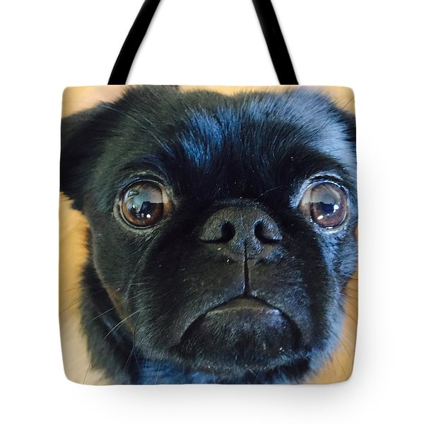 Tote Bag featuring the photograph Honestly by Paula Brown