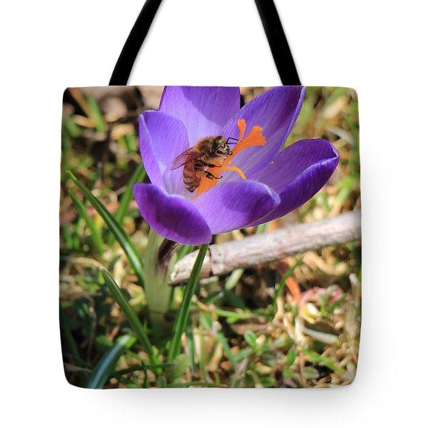 Honey Bee On Crocus  Tote Bag