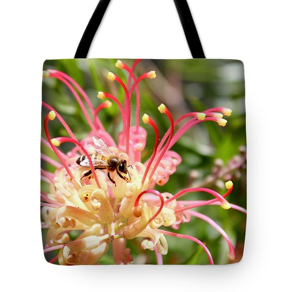 Honey Bee On Grevillea  Tote Bag