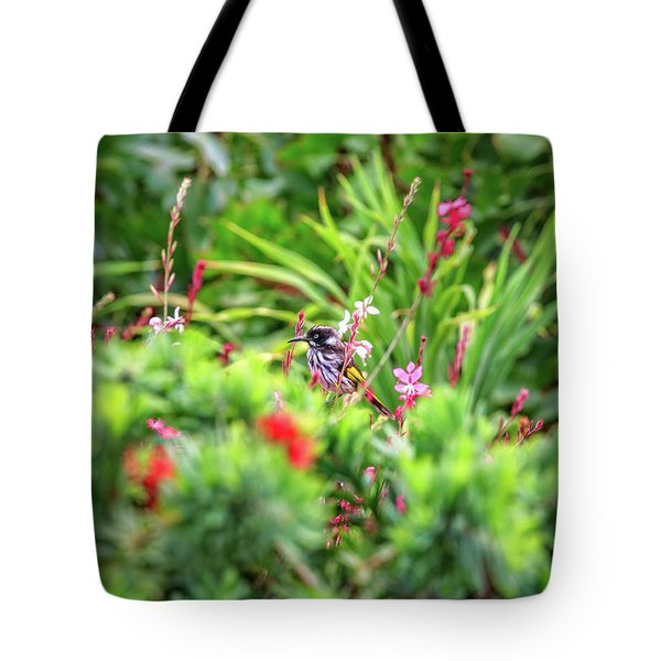 Tote Bag featuring the photograph Honey Eater, Bushy Lakes by Dave Catley