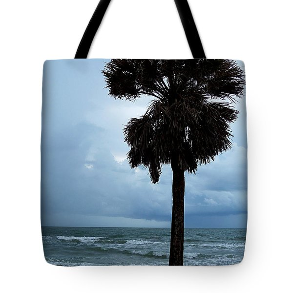 Tote Bag featuring the photograph Honey Moon Island North Beach Palm 000 by Chris Mercer