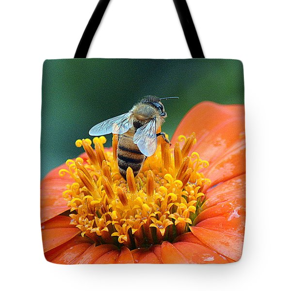 Honeybee On Orange Flower Tote Bag