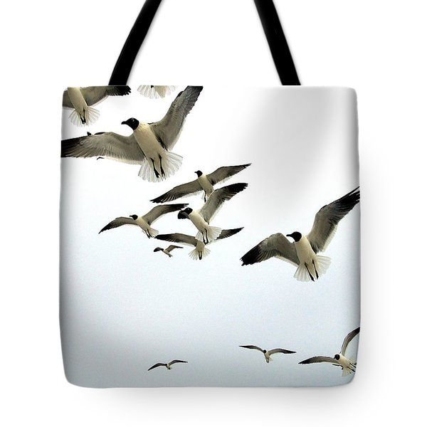Honeymoon Island Sea Gulls Tote Bag by Chris Mercer