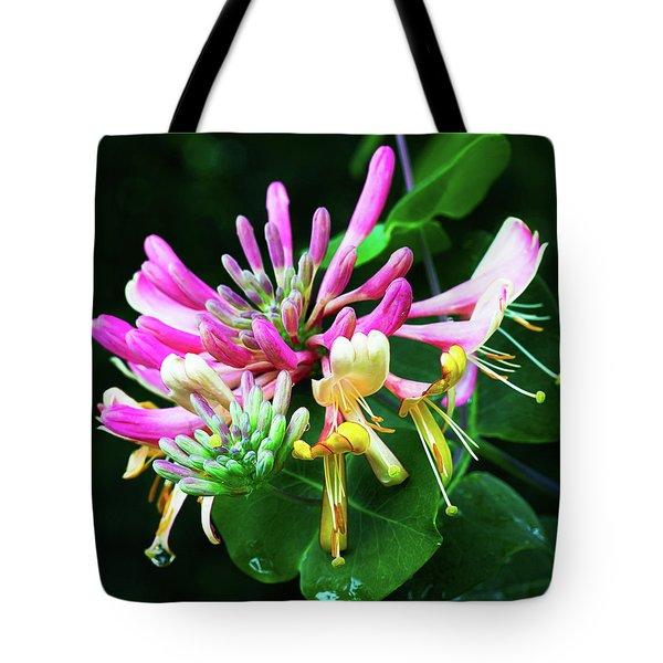 Honeysuckle Bloom Tote Bag