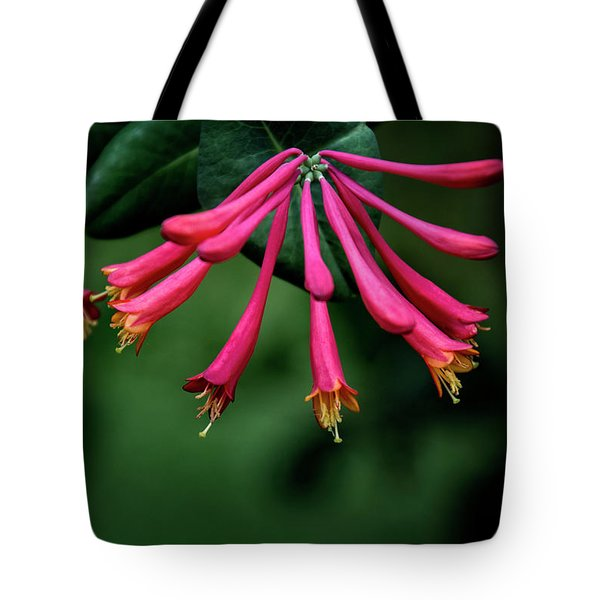 Tote Bag featuring the photograph Honeysuckle by Chrystal Mimbs