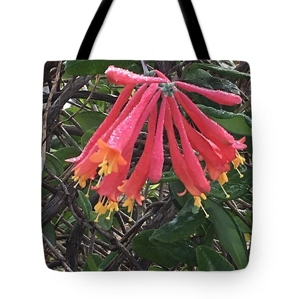 Tote Bag featuring the photograph Honeysuckle by Kay Gilley