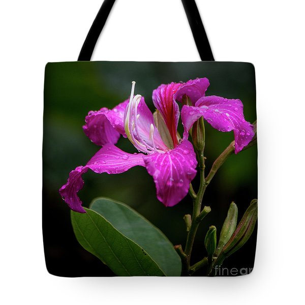 Tote Bag featuring the photograph Hong Kong Orchid by Teresa Wilson