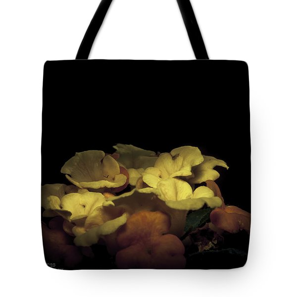 Honoring The Aurora Tote Bag by Karen Musick