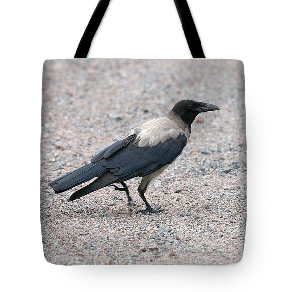 Tote Bag featuring the photograph Hooded Crow by Jouko Lehto