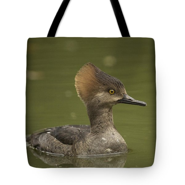 Hooded Merganser Tote Bag by Doug Herr
