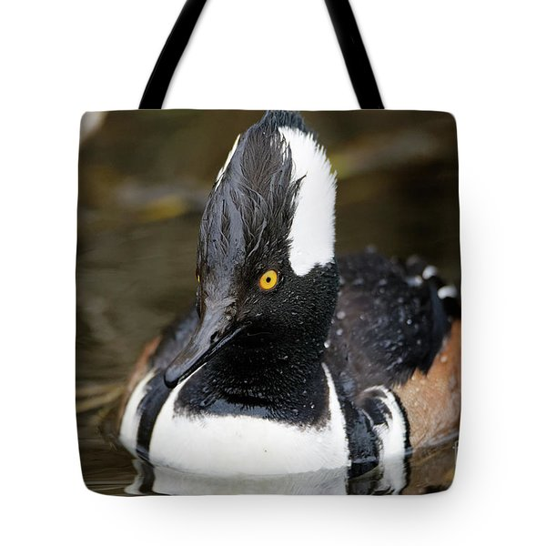 Hooded Merganser Hanging Out Tote Bag
