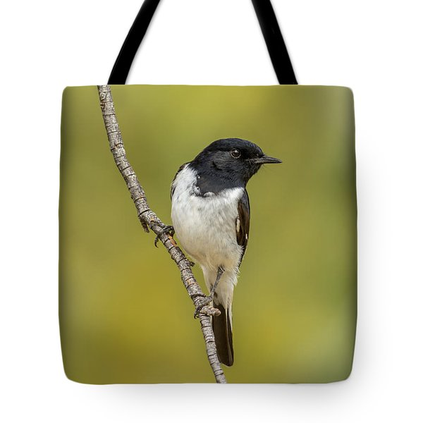 Hooded Robin Tote Bag