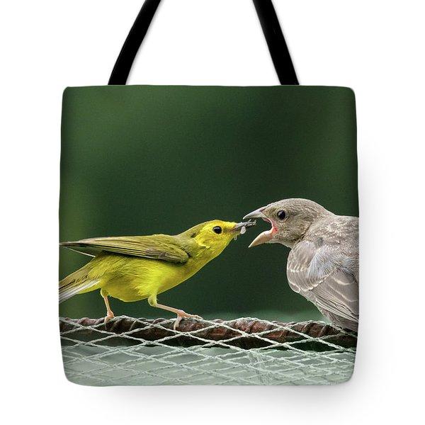 Hooded Warbler Feeding Cowbird Tote Bag