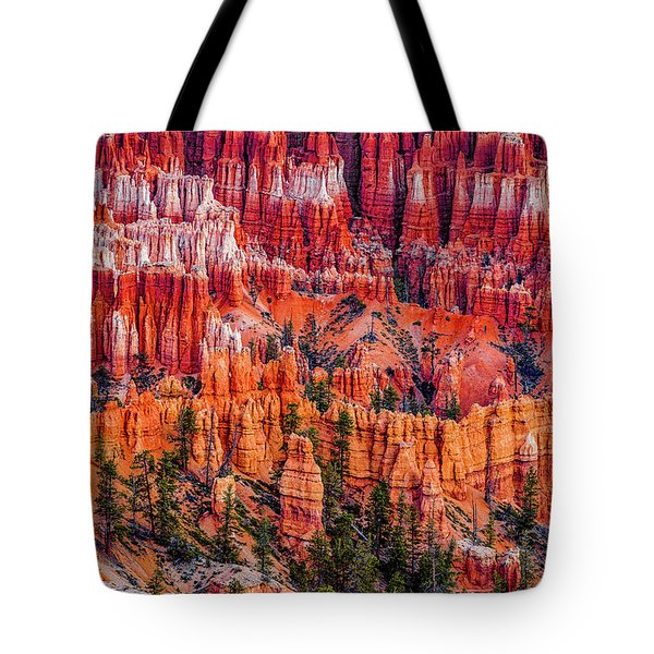 Hoodoo Forest Tote Bag by David Cote