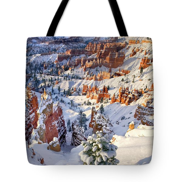 Tote Bag featuring the photograph Hoodoos And Fir Tree In Winter Bryce Canyon Np Utah by Dave Welling