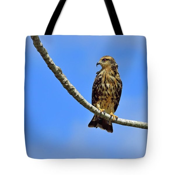 Hook Tote Bag by Tony Beck