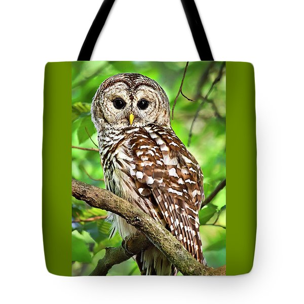 Tote Bag featuring the photograph Hoot Owl by Christina Rollo