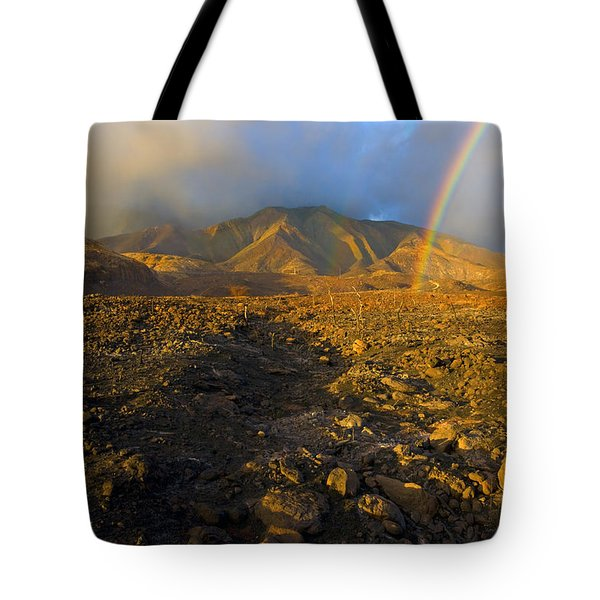 Hope From Desolation Tote Bag by Mike  Dawson