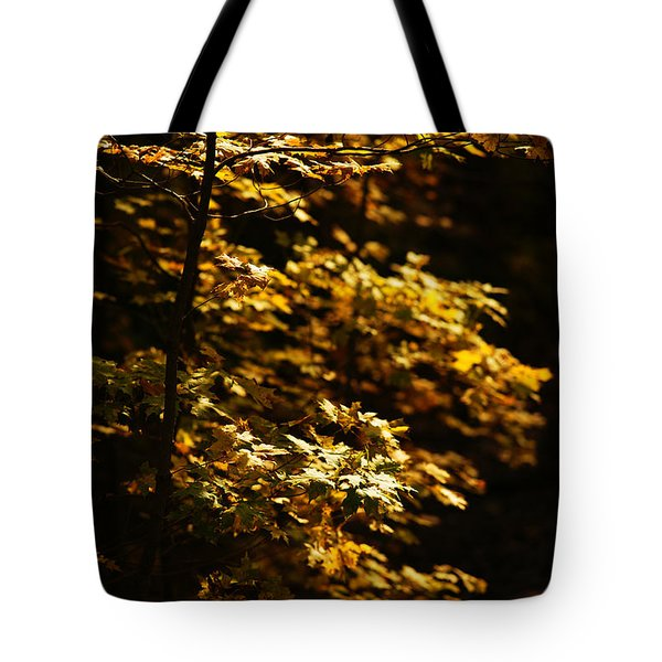Hope Leaves Tote Bag by Linda Shafer