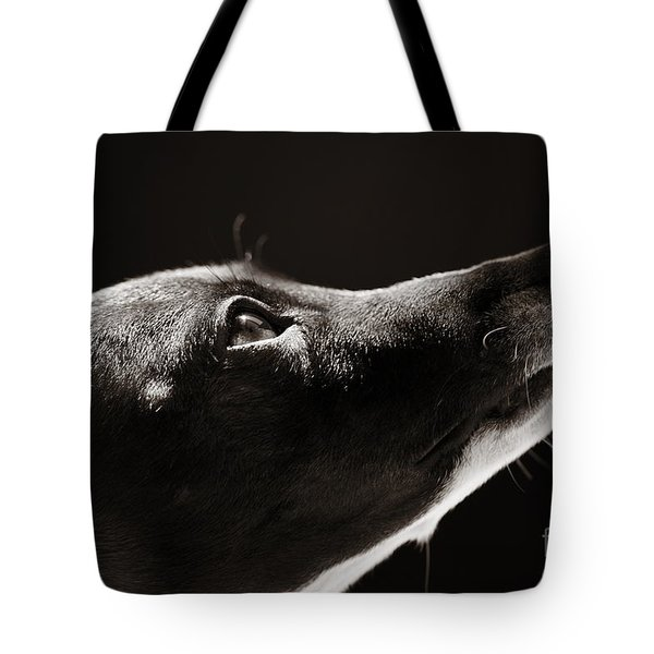 Tote Bag featuring the photograph Hopeful by Angela Rath