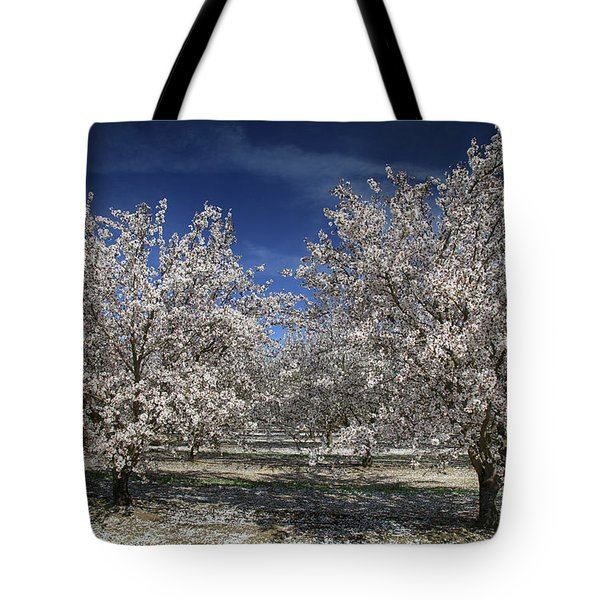 Hopes And Dreams Tote Bag by Laurie Search