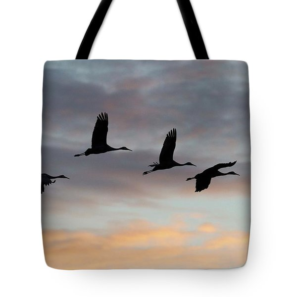 Horicon Marsh Cranes #1 Tote Bag