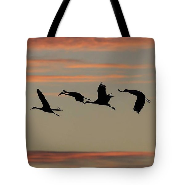 Tote Bag featuring the photograph Horicon Marsh Cranes #2 by Paul Schultz