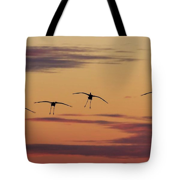 Tote Bag featuring the photograph Horicon Marsh Cranes #4 by Paul Schultz