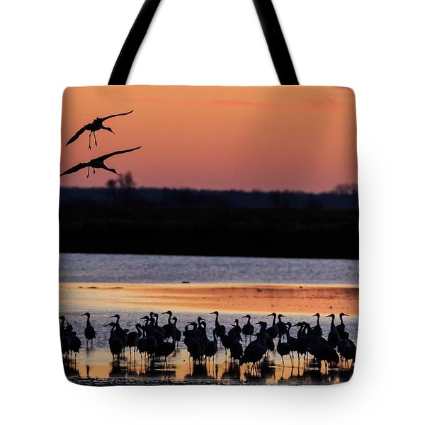 Horicon Marsh Cranes #5 Tote Bag