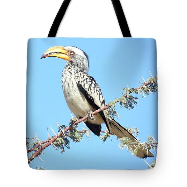 Hornbill In Thorn Tree Tote Bag