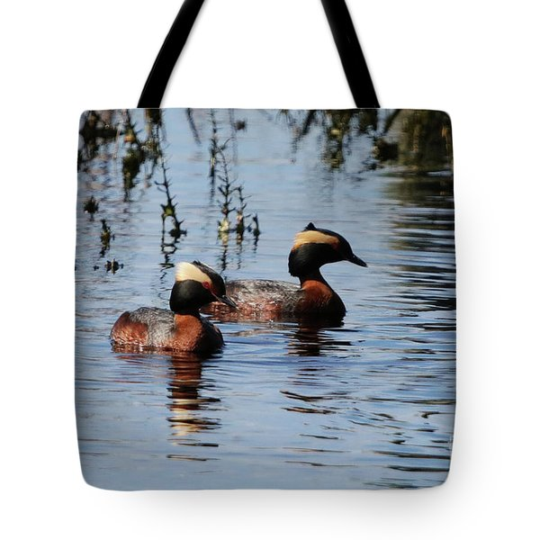 Horned Grebe Couple Tote Bag