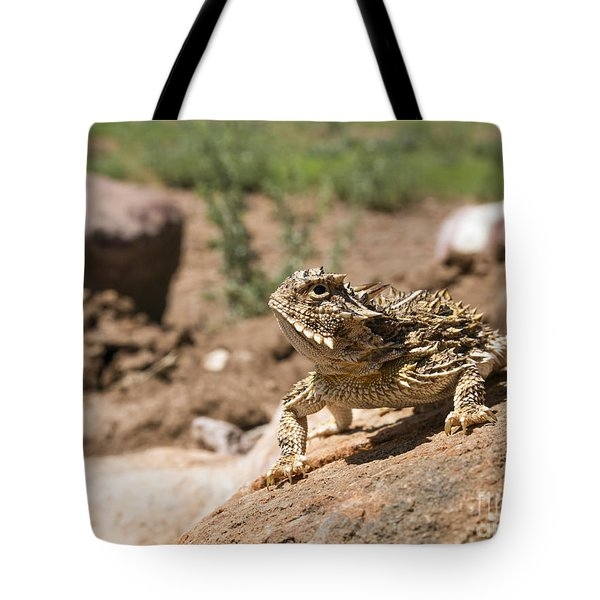 Horned Lizard Tote Bag