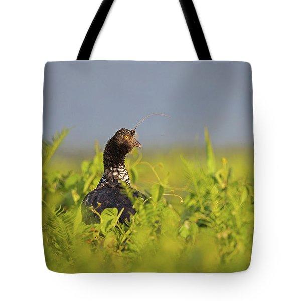 Horned Screamer Tote Bag