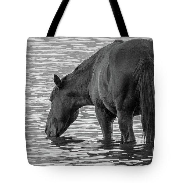 Horse 5 Tote Bag