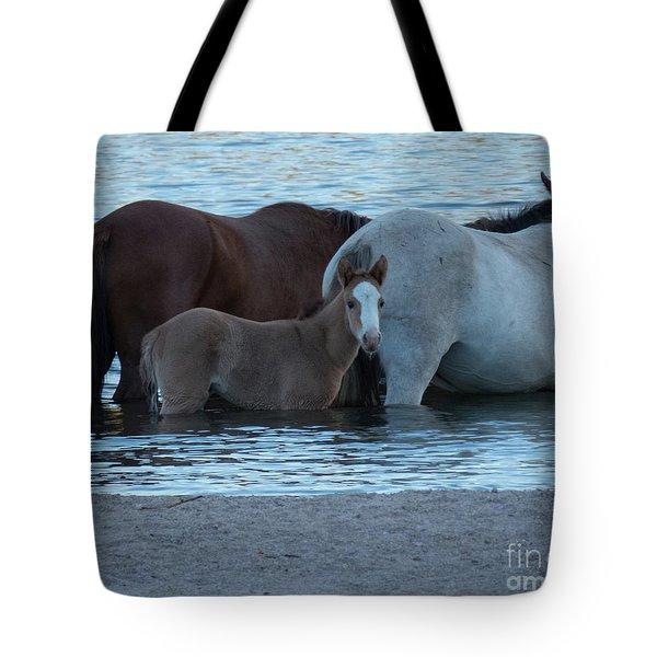 Horse 9 Tote Bag