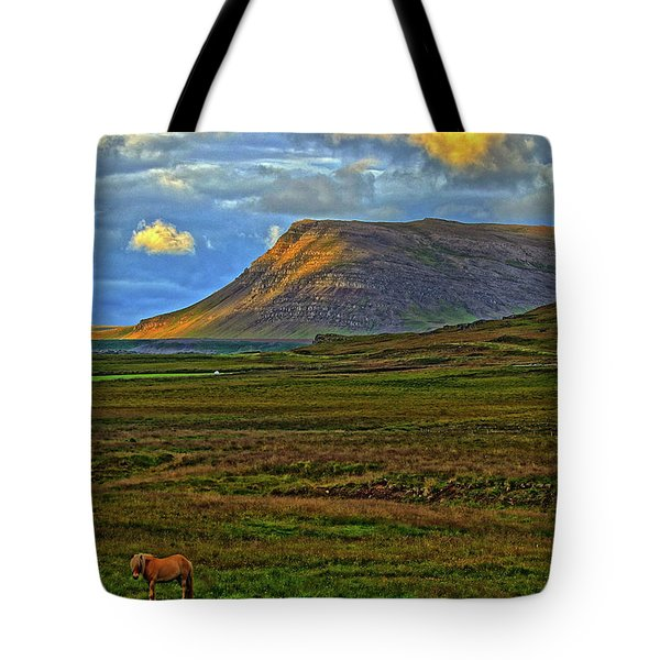 Tote Bag featuring the photograph Horse And Sky by Scott Mahon