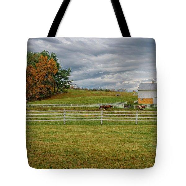 Horse Barn In Ohio  Tote Bag