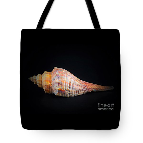 Horse Conch Tote Bag