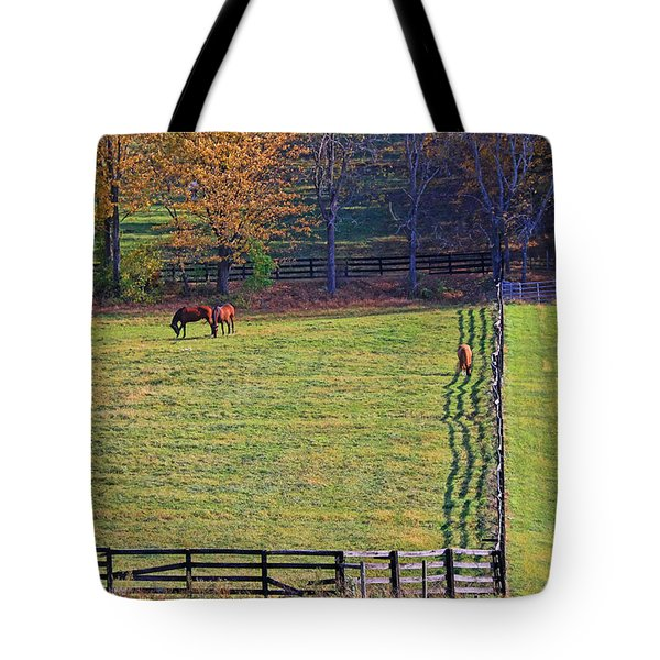 Horse Country # 2 Tote Bag