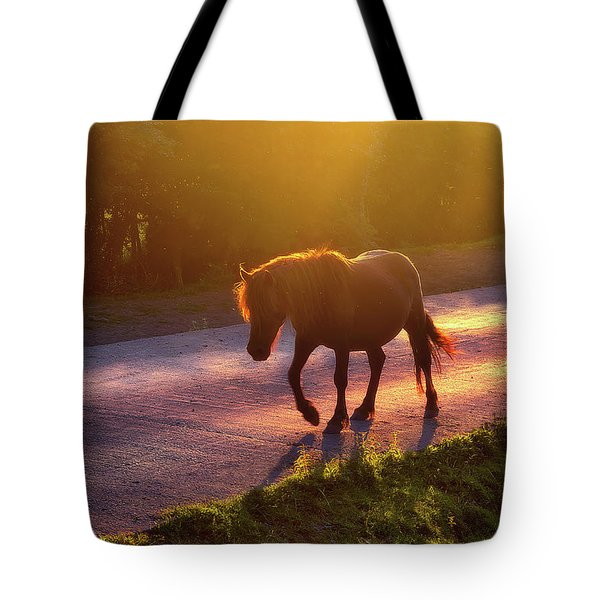 Horse Crossing The Road At Sunset Tote Bag