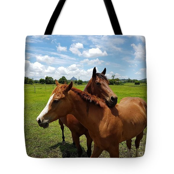 Horse Cuddles Tote Bag