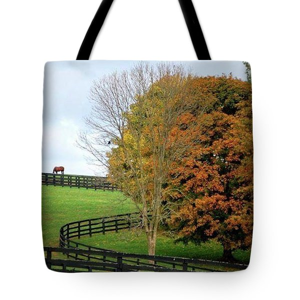 Horse Farm Country In The Fall Tote Bag