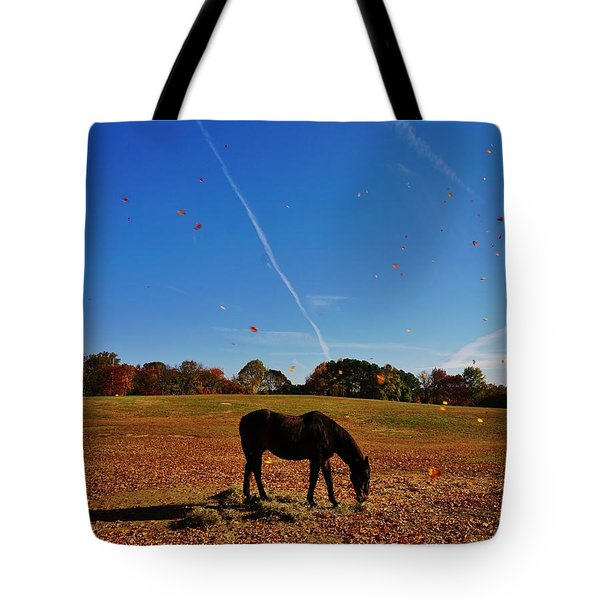 Horse Farm In The Fall Tote Bag by Ed Sweeney