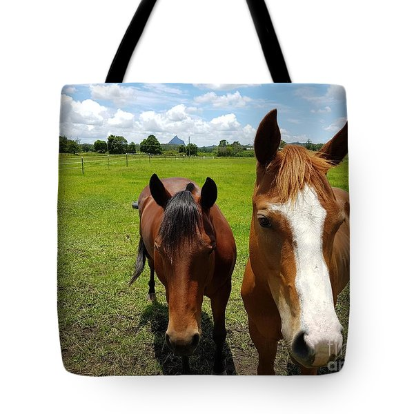 Horse Friendship Tote Bag