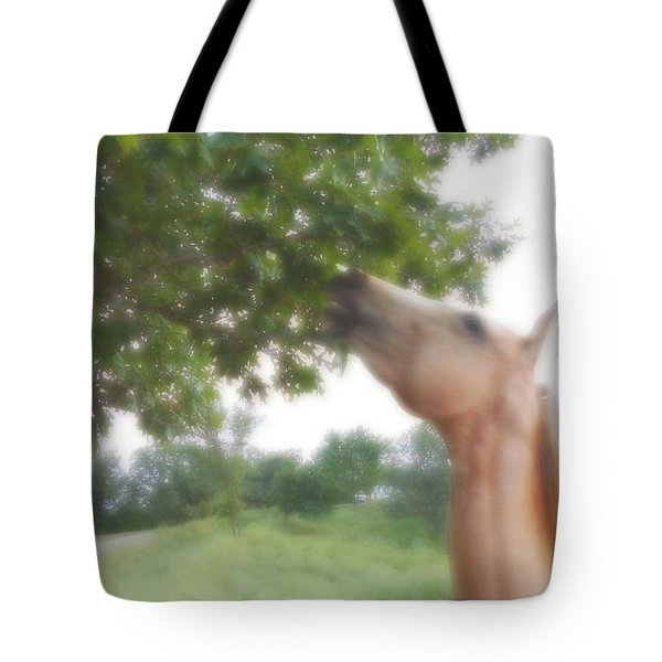 Horse Grazes In A Tree Tote Bag