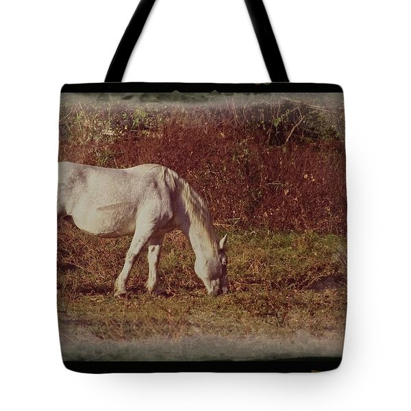 Horse Grazing Tote Bag