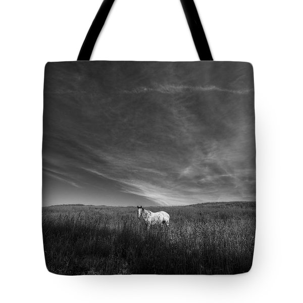 Horse In Field II Tote Bag