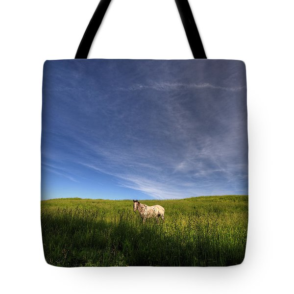 Horse In Field IIi Tote Bag