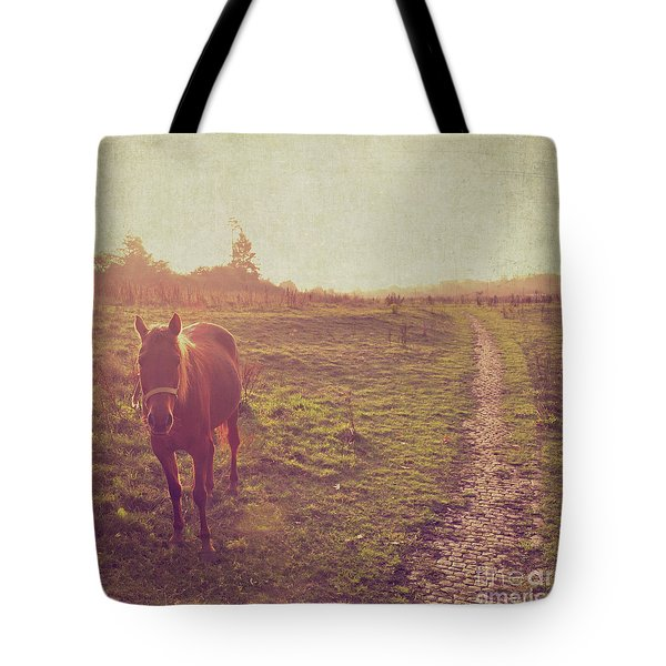 Tote Bag featuring the photograph Horse by Lyn Randle