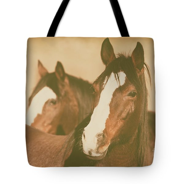 Tote Bag featuring the photograph Horse Portrait by Ana V Ramirez